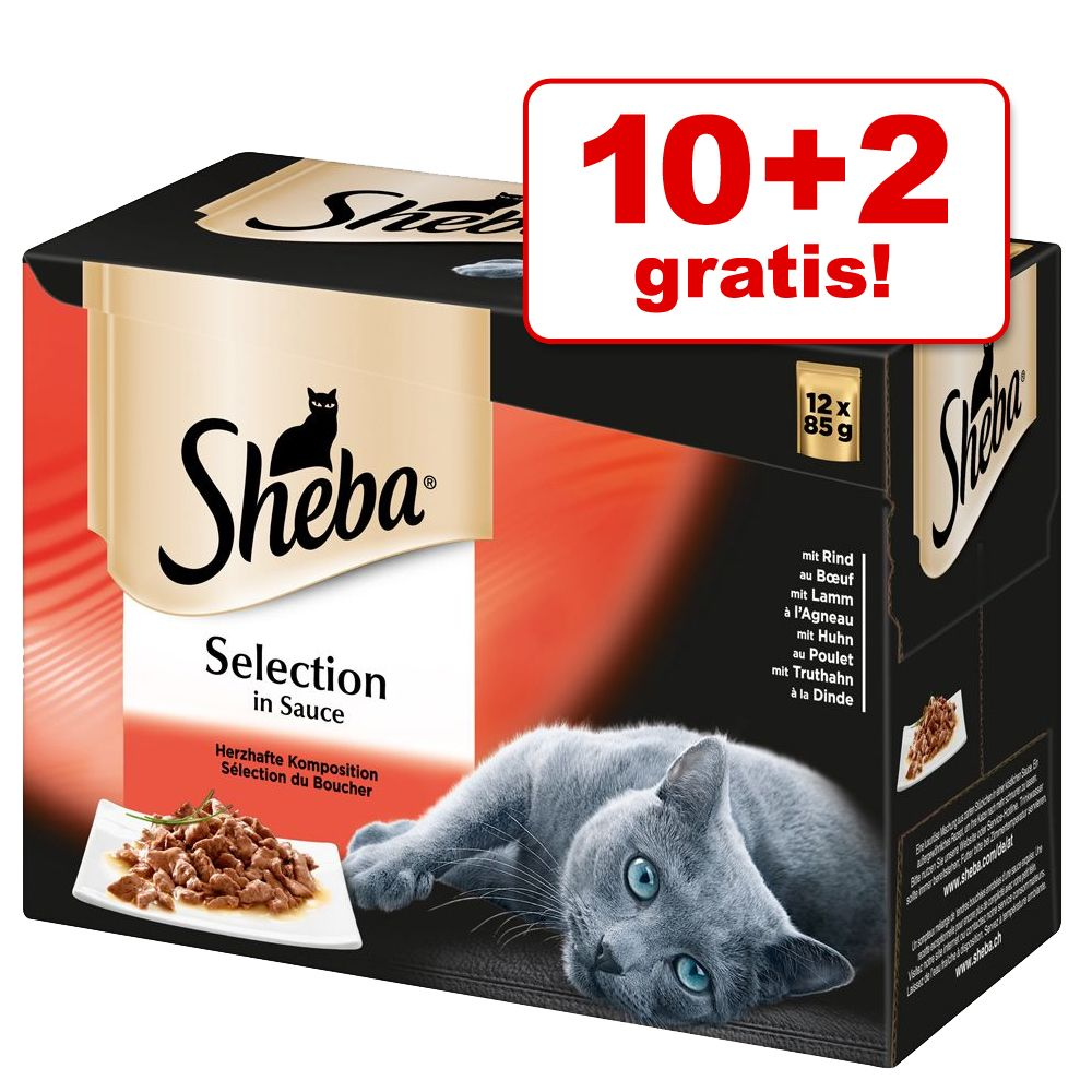 10 + 2 på köpet! 12 x 85 g Sheba Selection in Sauce Fish in Gravy