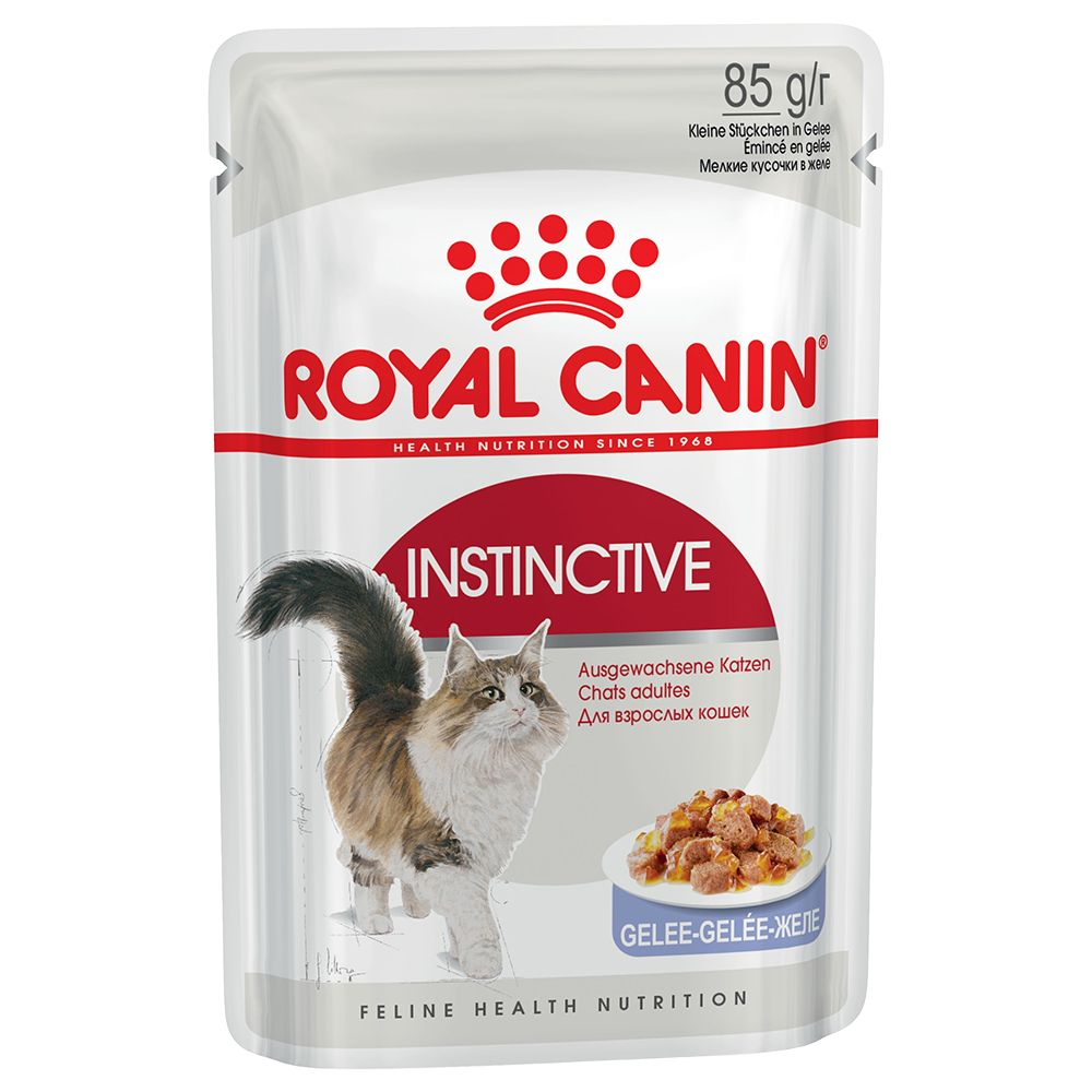 48 x 85g Royal Canin Wet Cat Food - 36 + 12 Free!* - Kitten Instinctive Loaf (48 x 85g)