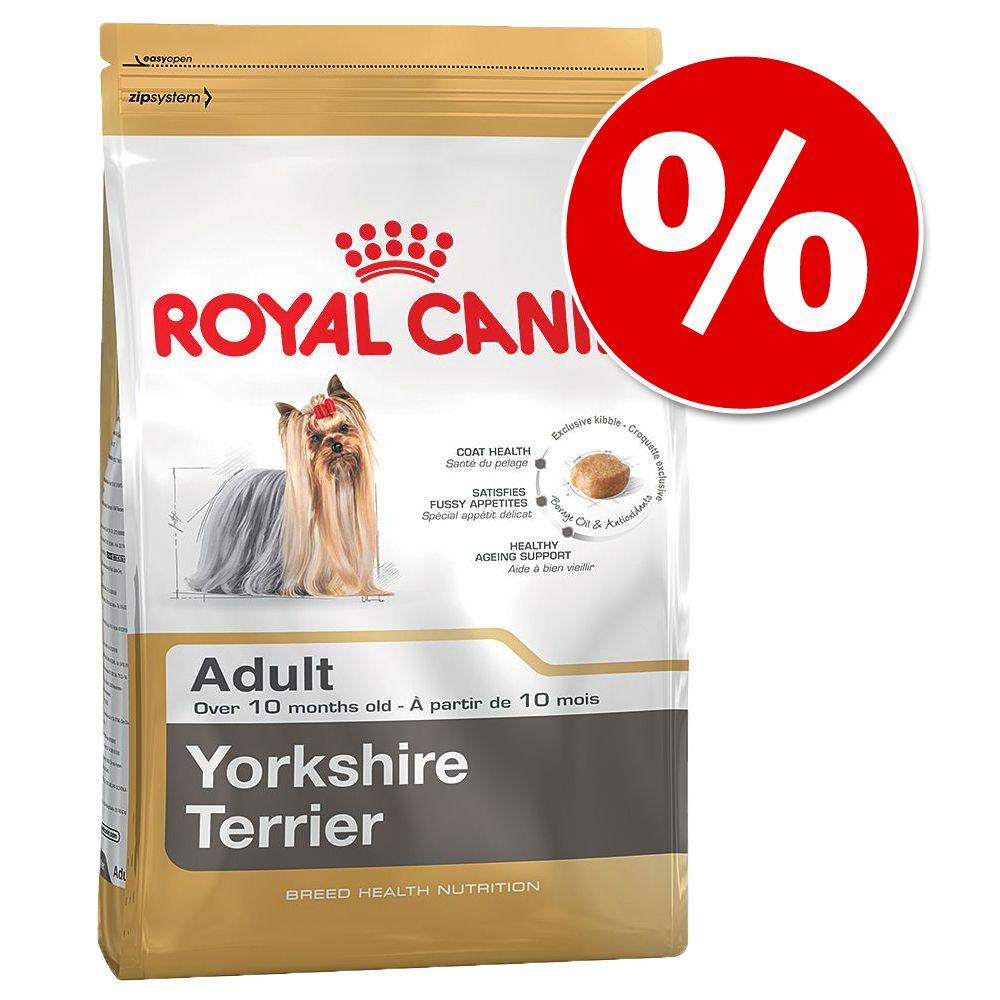 10 kg Royal Canin Yorkshire Terrier Adult w super cenie! - 10 kg