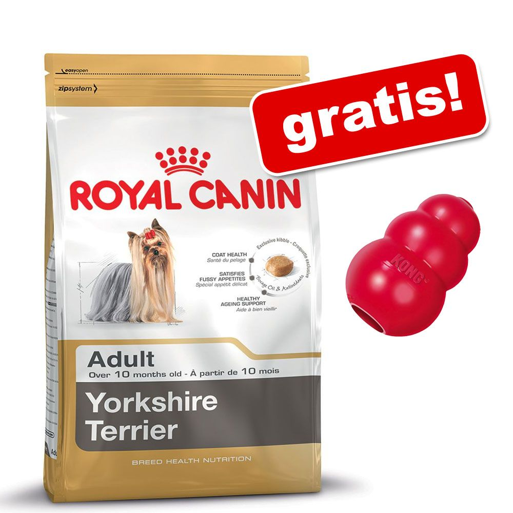 Duże opakowanie Royal Canin Breed + Kong gratis! - Boxer Adult, 12 kg