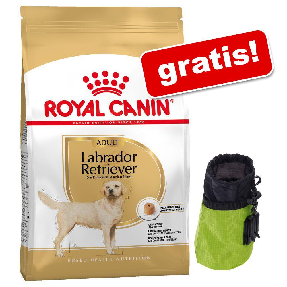 Stor påse Royal Canin Breed + godisväska med reflexband på