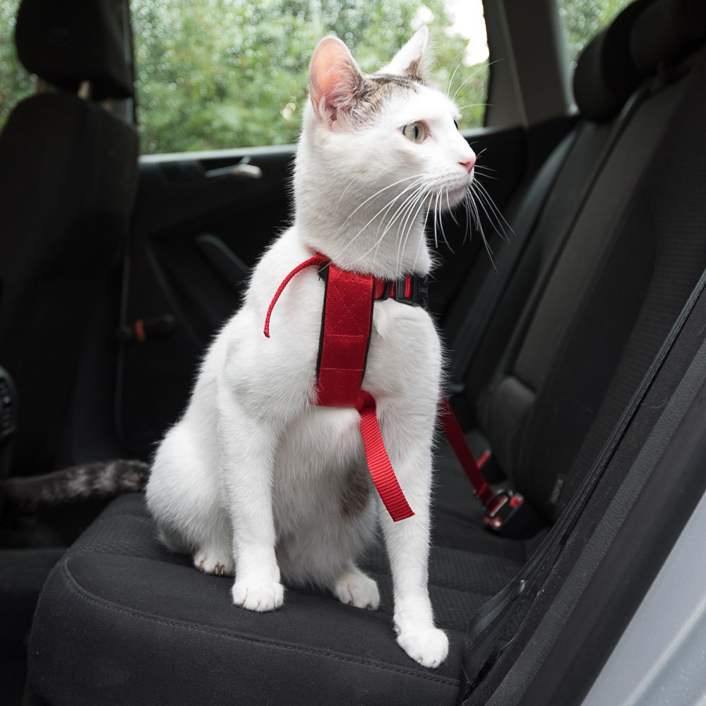 Trixie Cat Car Harness Red
