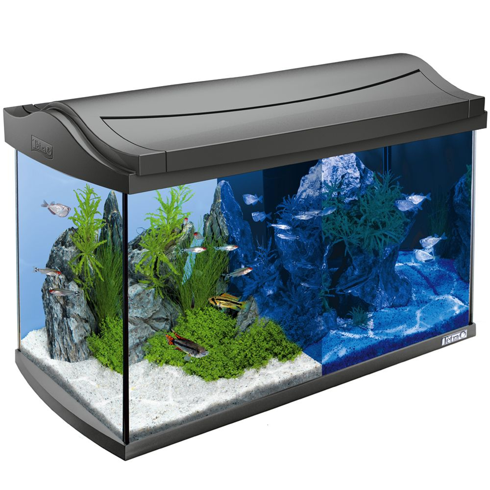 Tetra AquaArt LED Aquarium Komplett-Set 60 L an...