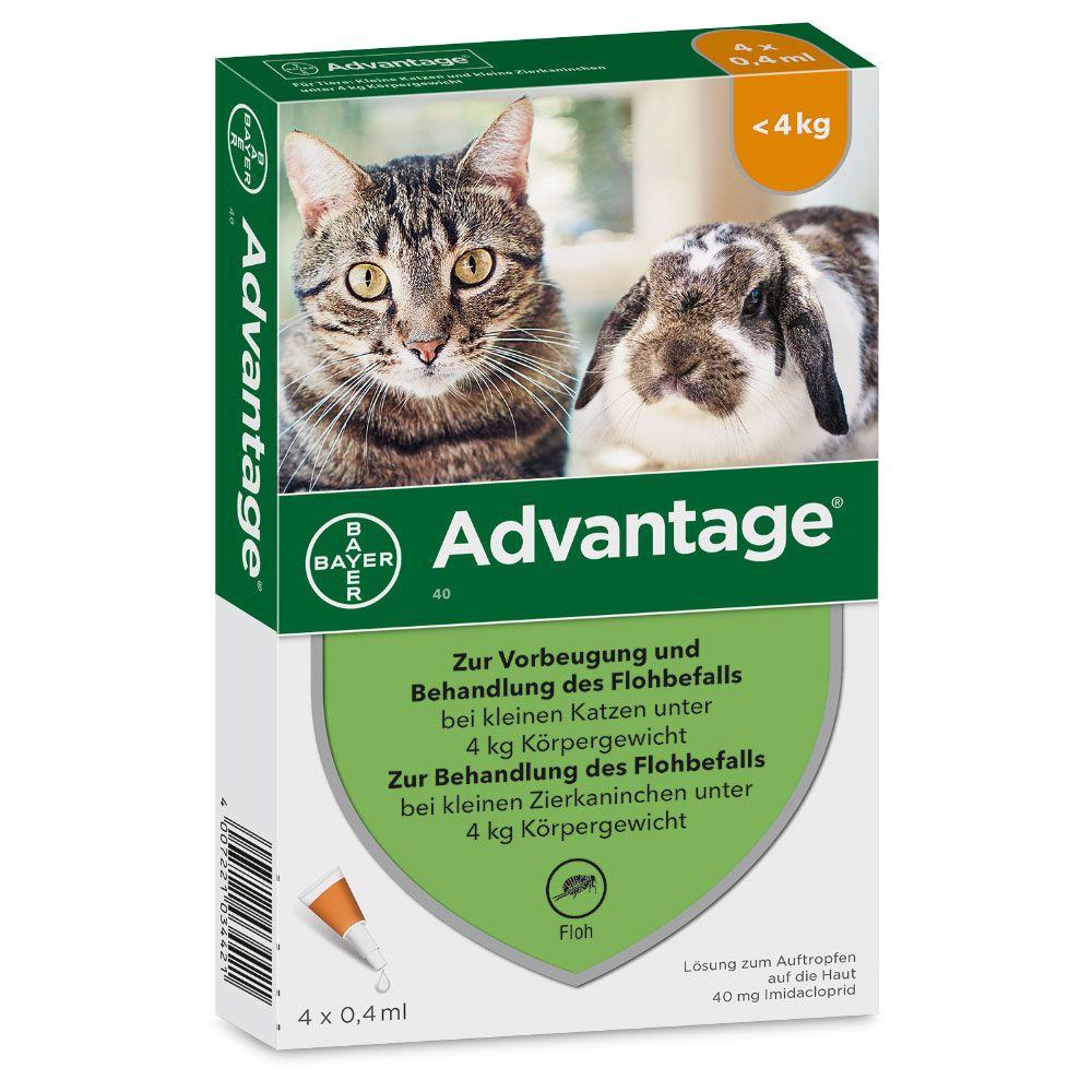 Advantage® für Katzen und Zierkaninchen - 80 mg: 4 Pipetten x 0,8 ml