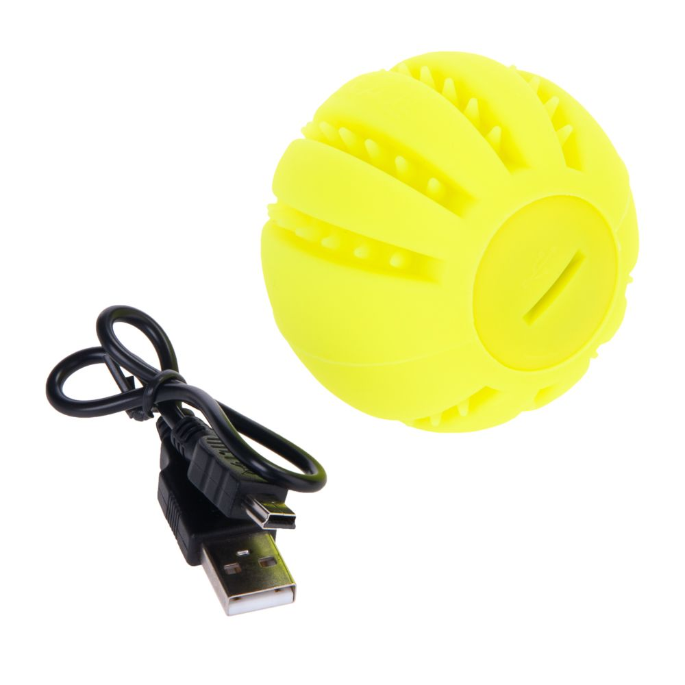 Silicone LED Dog Ball Toy
