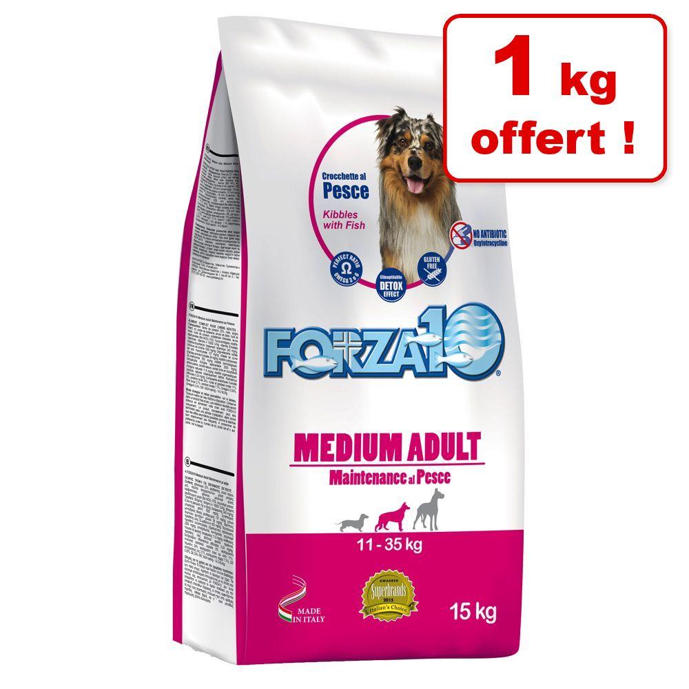 15kg Light, thon, riz Maintenance Forza10 Croquettes pour chien