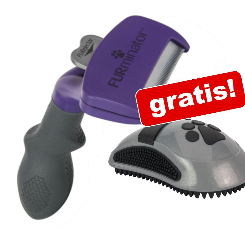FURminator deShedding Tool för katt + Curry Comb massageborste på köpet! - Liten katt / pälslängd över 5 cm NY DESIGN
