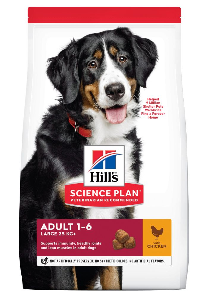 Big Bags Royal Canin Breed Dry Dog Food