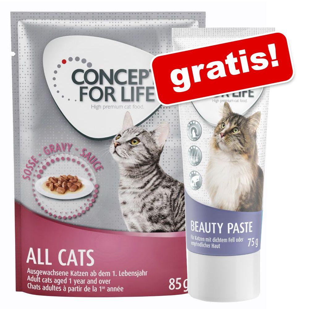 24 x 85 g Concept for Life våtfoder + 75 g Beauty Paste på köpet! Beauty i sås