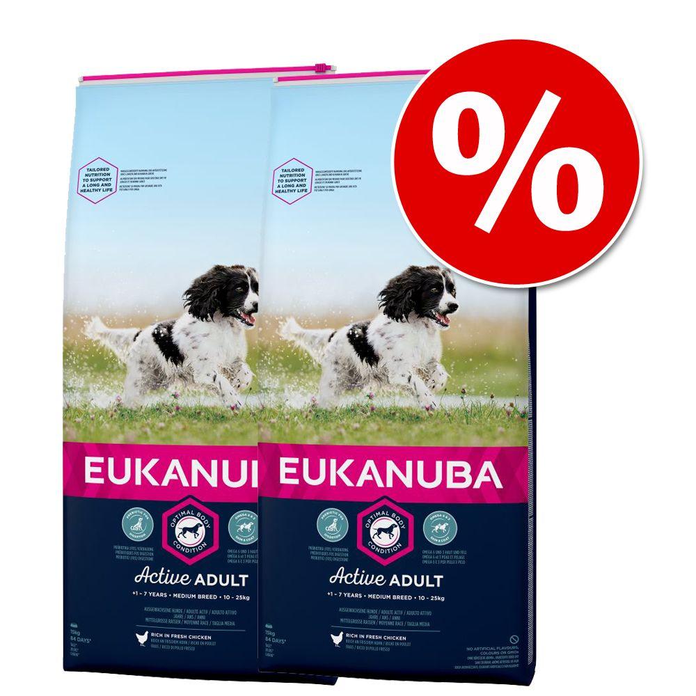 Ekonomipack: 2 resp. 3 förpackningar Eukanuba hundfoder till lågpris! - Rottweiler (2 x 12 kg)
