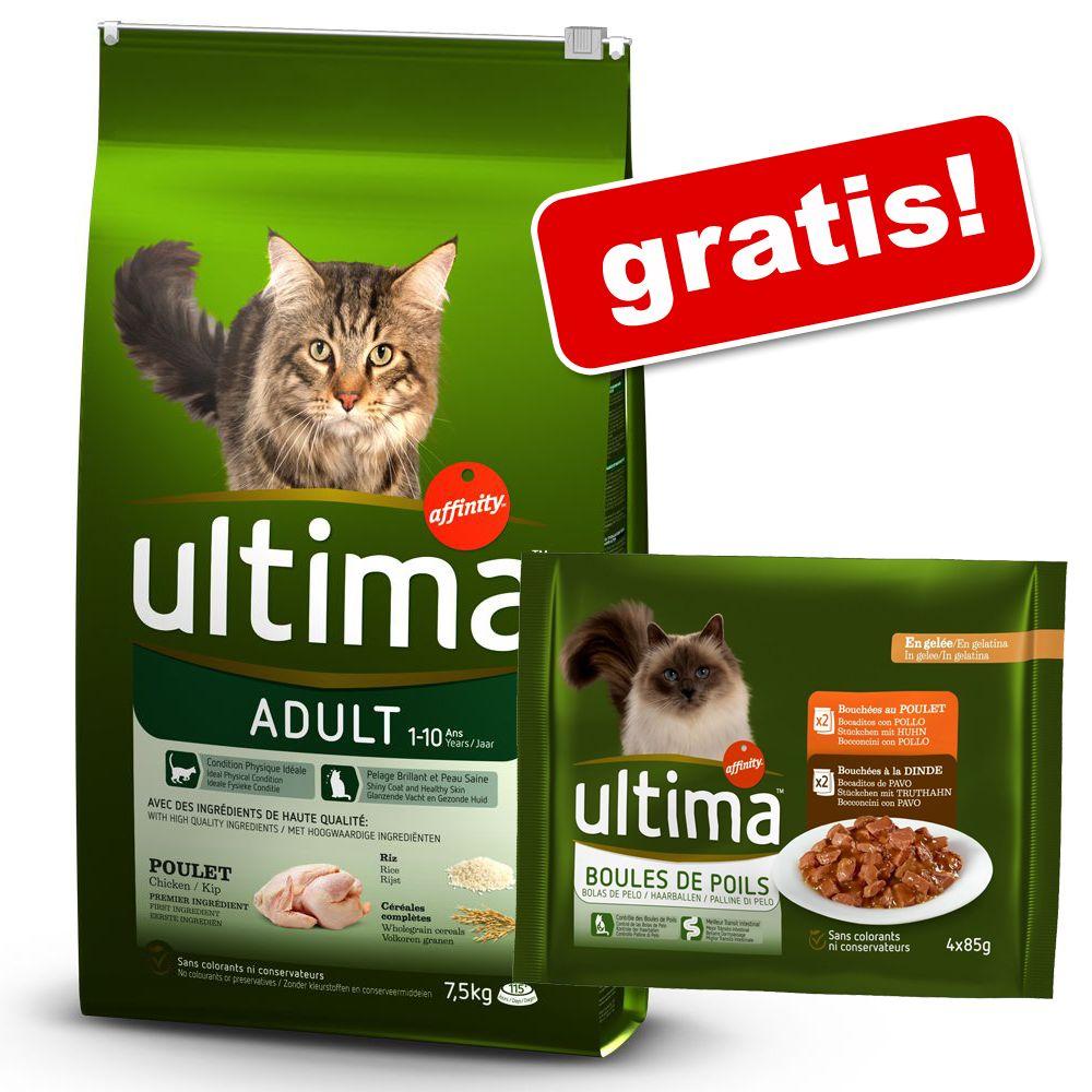 7,5 kg Ultima Cat torrfoder + 4 x 85 g våtfoder på köpet! Adult Chicken 7,5 kg + Hairball våtfoder