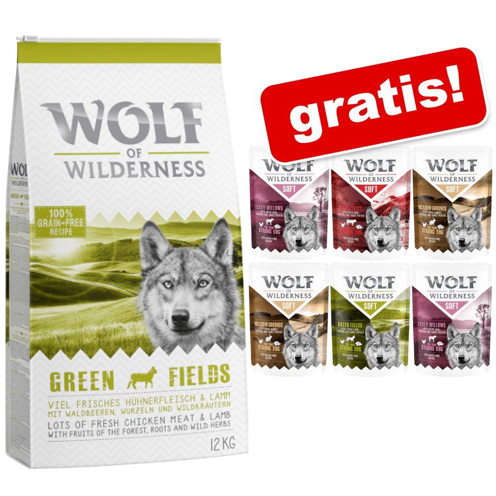 12 kg Wolf of Wilderness + 6 x 300 g vådfoder-mix gratis! - Rough Storms - And