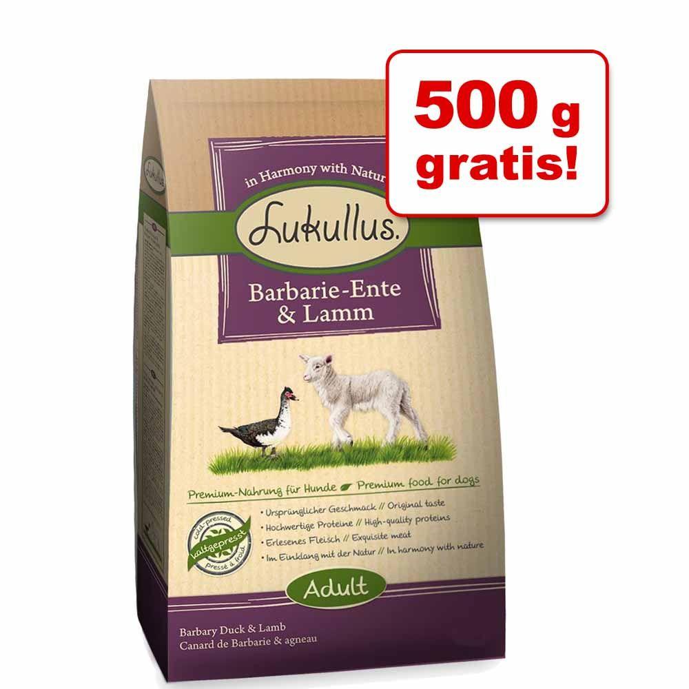 Foto 5,5 kg + 500 g gratis! 6 kg Lukullus - Pollo & Salmone