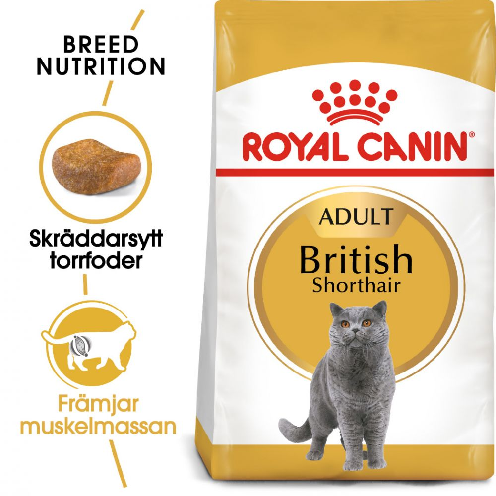 Royal Canin British Shorthair Adult - 4 kg