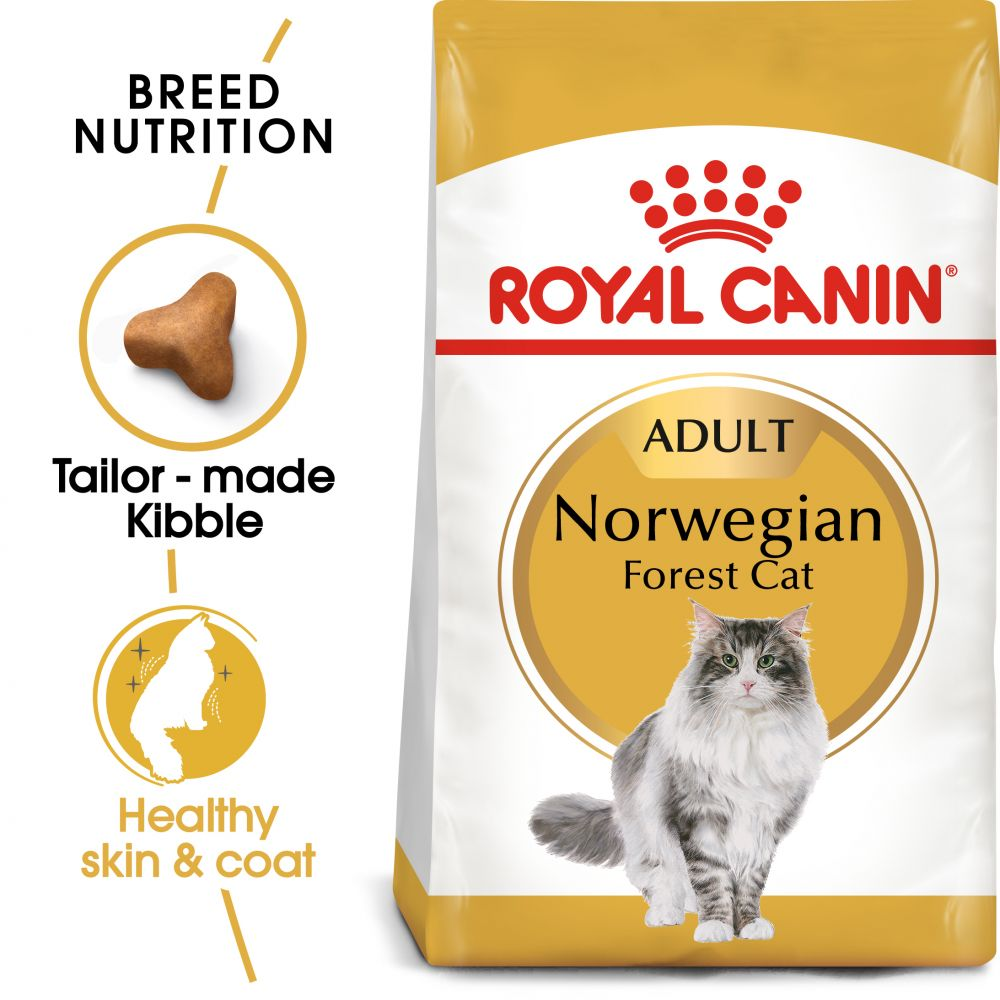 Royal Canin Norwegian Forest Cat - 2 kg