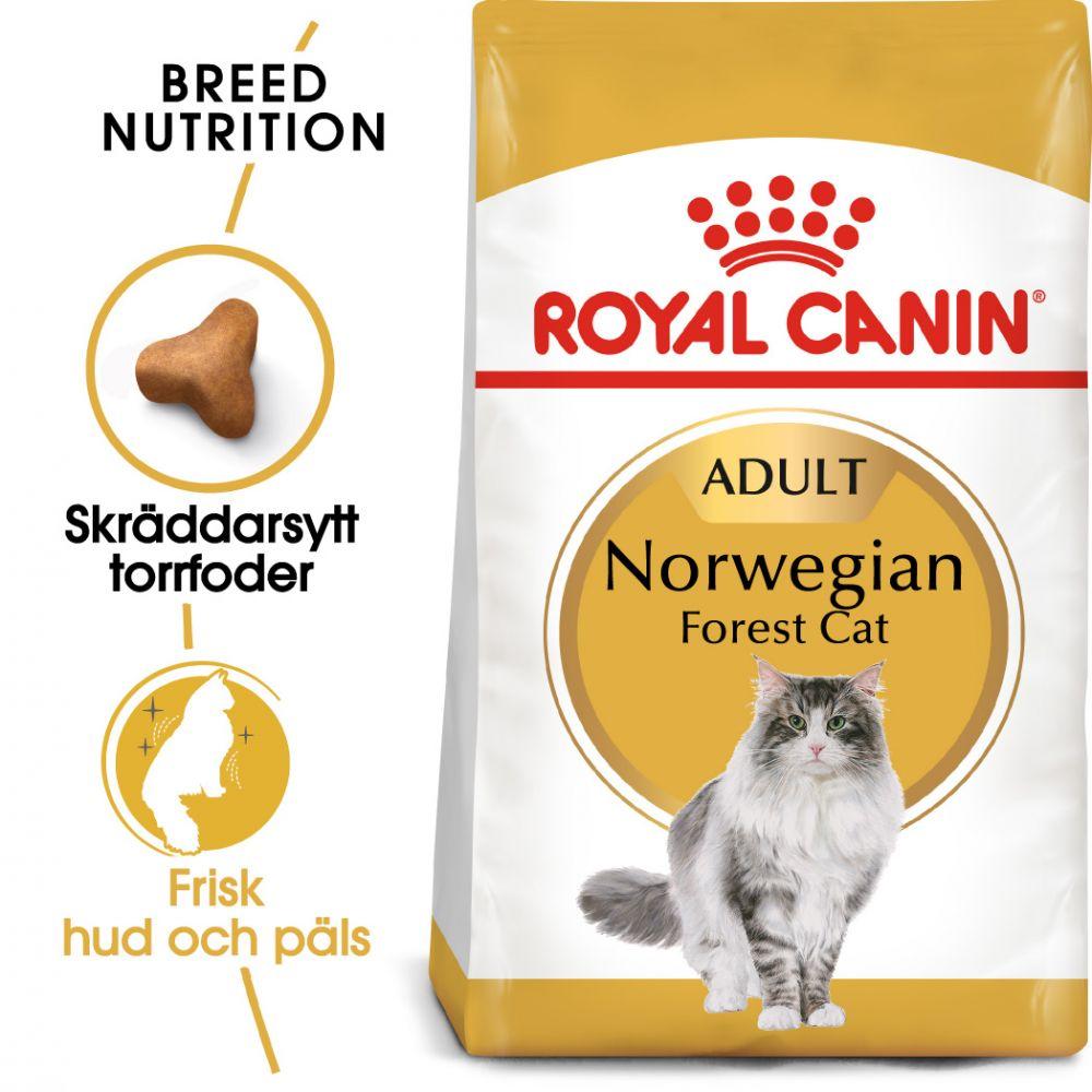 Royal Canin Norwegian Forest Cat - 10 kg