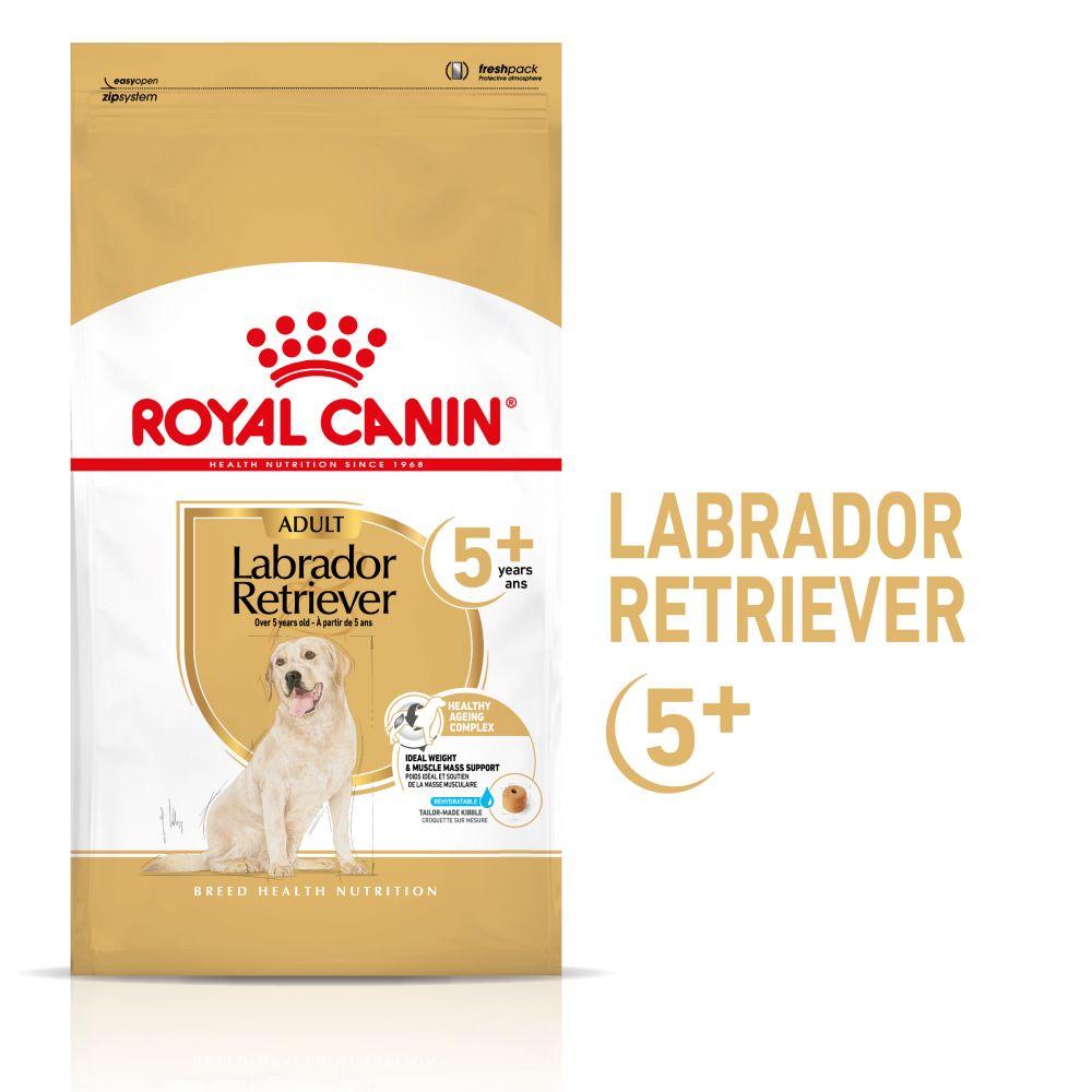Royal Canin Breed Labrador Retriever Adult 5+ - Ekonomipack: 2 x 12 kg