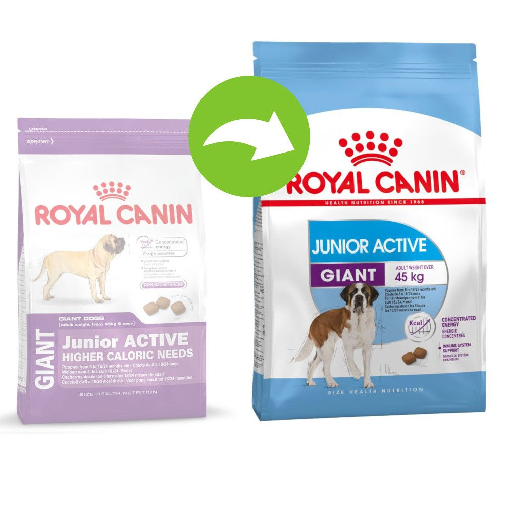 Image of Royal Canin Giant Junior Active - Set %: 2 x 15 kg
