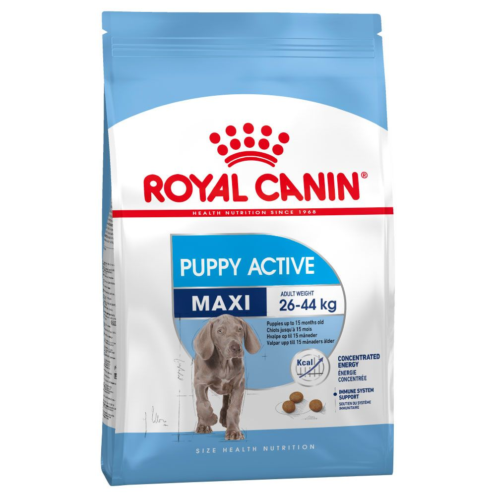 Maxi Puppy Active Royal Canin Dry Dog Food