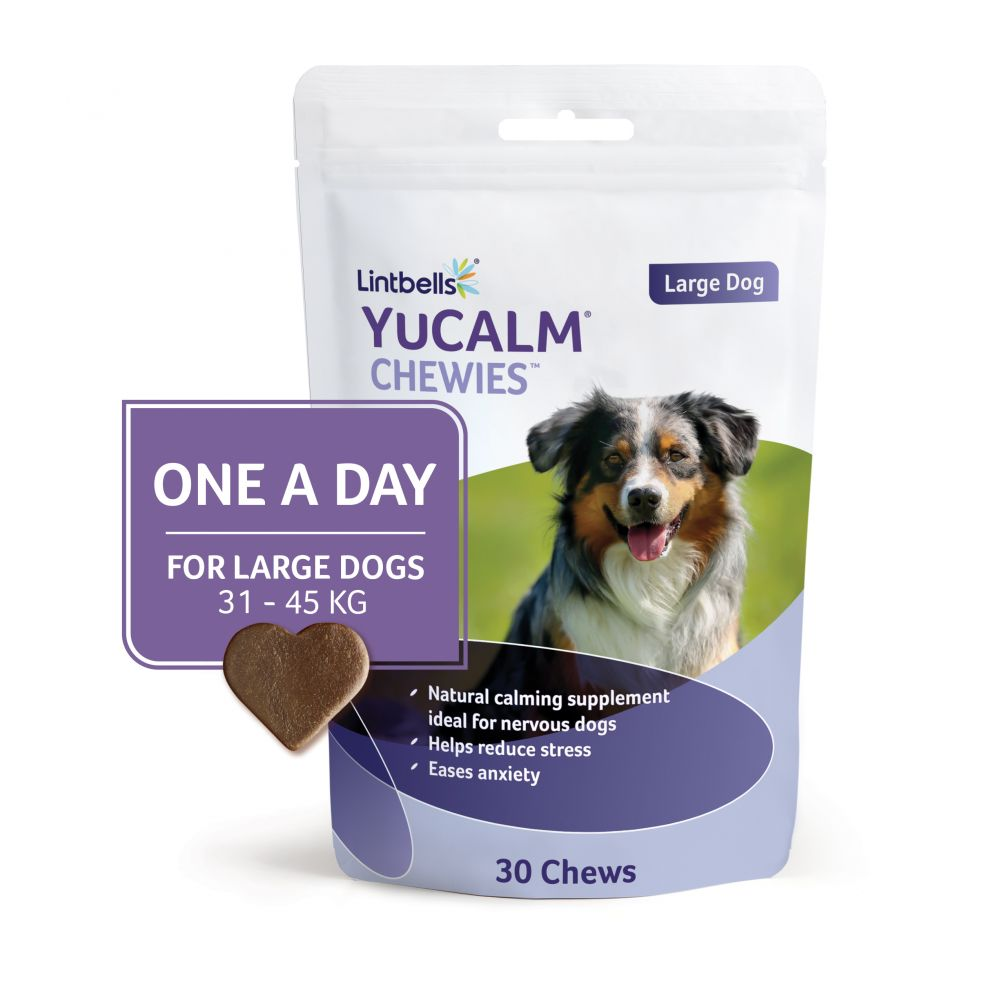 Click to view product details and reviews for Lintbells Yucalm One A Day Chewies Dog Supplement Medium 90 Chews.