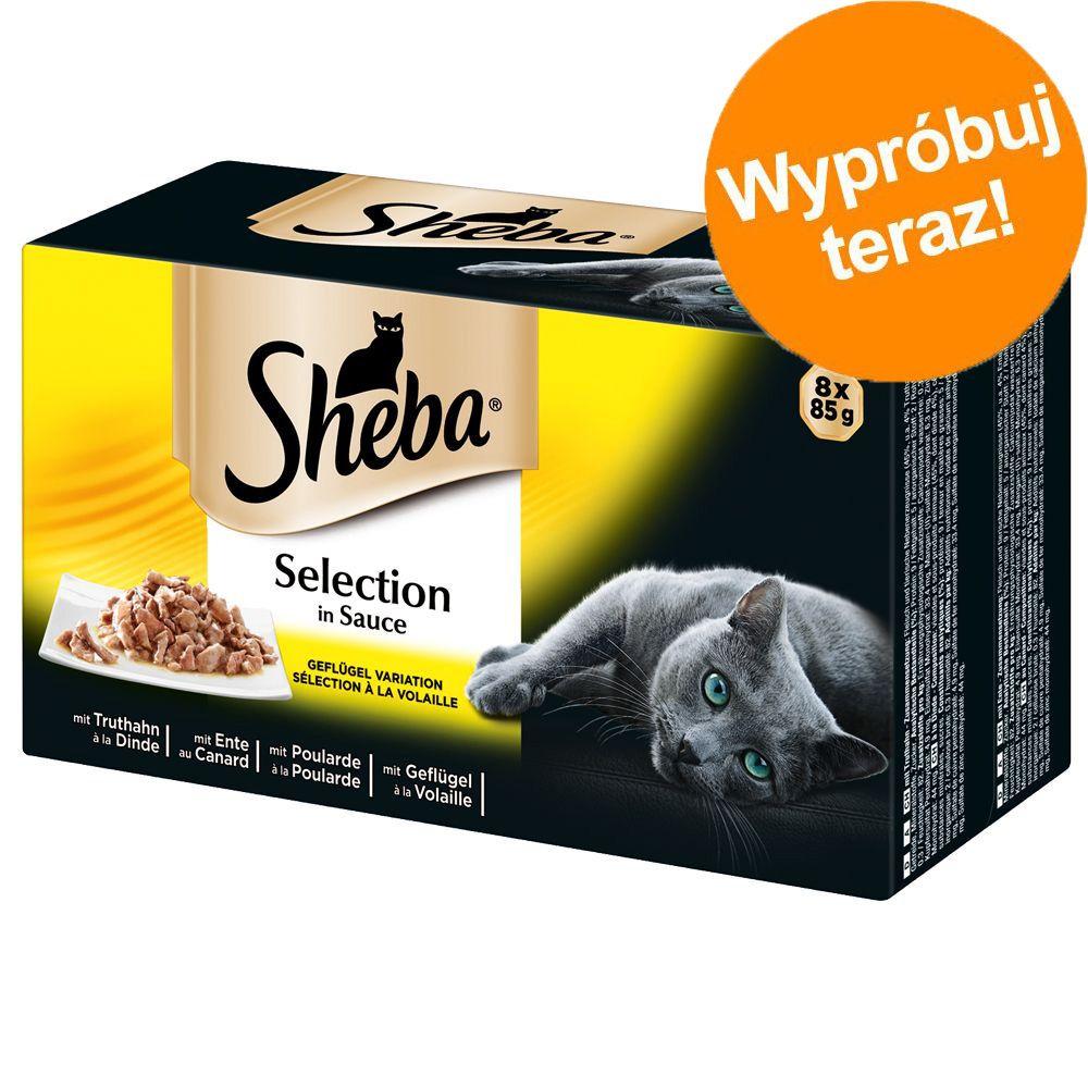 Pakiet próbny Sheba tacki, 8 x 85 g - Selection in Sauce