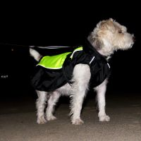 Mantella per cani illume nite neon - - ca. 35 cm lungh. dorso.