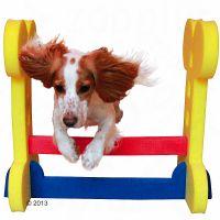 Rosewood Small Dog Agility Hurdle - 68 x 32 x 58 cm (L x W x H)