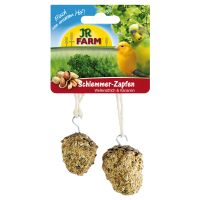 JR Birds Gourmet Pine Cone - 2 pieces