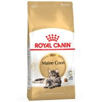 Royal Canin Breed Dry Cat Food Economy Packs - Kitten Persian 2 x 4kg