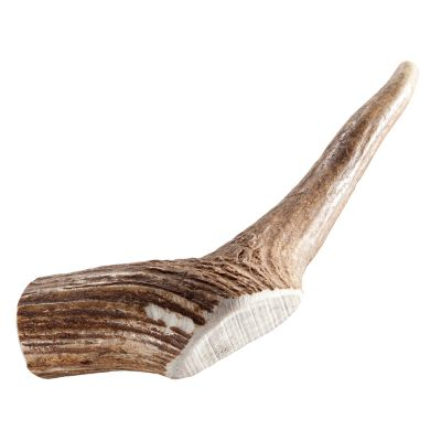 Chewies saksanhirven sarvitangot - 2 x koko L