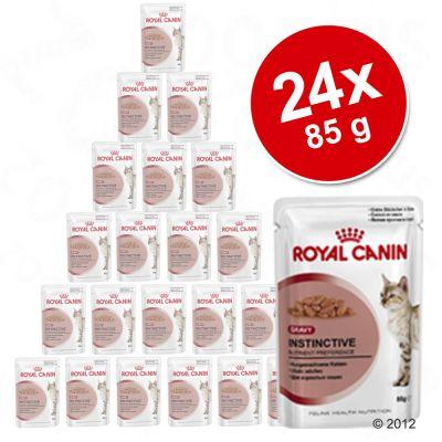 okonomipakke-24-x-85-g-royal-canin-vaadfoder-intense-beauty-i-sauce