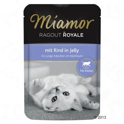 22 x 100 g Miamor Ragout Royale Kitten Kattenvoer met Gevogelte Voordeelpakket