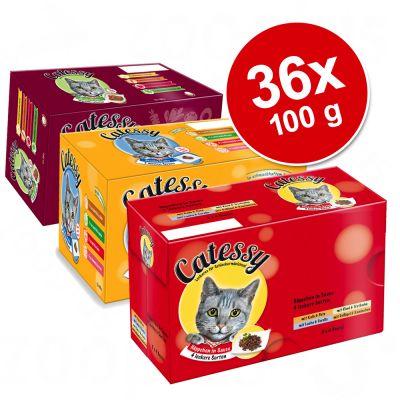 Catessy kastikkeella ja hyytelöllä, monta makua - 36 x 100 g, 12 eri makua
