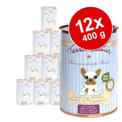 Terra Canis Puppy -säästöpakkaus 12 x 400 g - nauta, omena, porkkana & ruusunmarja