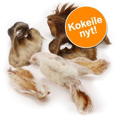 Wolf of Wilderness -kokeilupakkaus: karvaiset kanin- ja naudankorvat - 3 kpl naudankorva + 100 g kaninkorva