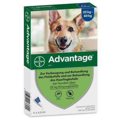 Advantage® 400 für Hunde