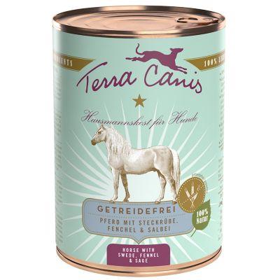 Terra Canis, viljaton 6 x 400 g - kani, kesäkurpitsa, aprikoosi & purasruoho