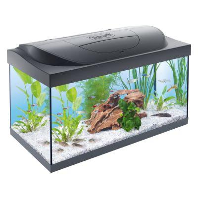 Tetra Starter Line Aquarium LED - 54 L
