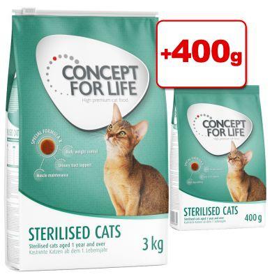 Concept for Life -kissanruoka 3 kg + 400 g kaupan päälle! - Outdoor Cats