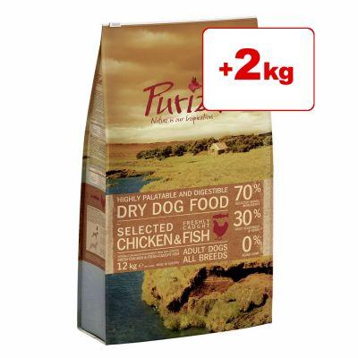 Purizon koiranruoka 12 kg: 10 + 2 kg kaupan päälle! - Single Meat Adult Lamb & Peas - viljaton