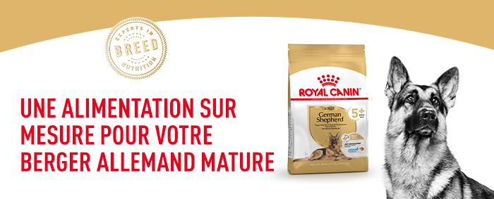 Royal Canin Berger allemand Adult 5+