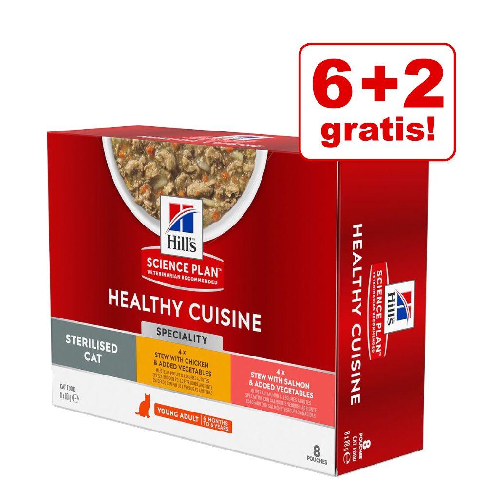 6 + 2 på köpet! 8 x 80 g Hill's Science Plan Healthy Cuisine - Kitten with Chicken & Ocean Fish