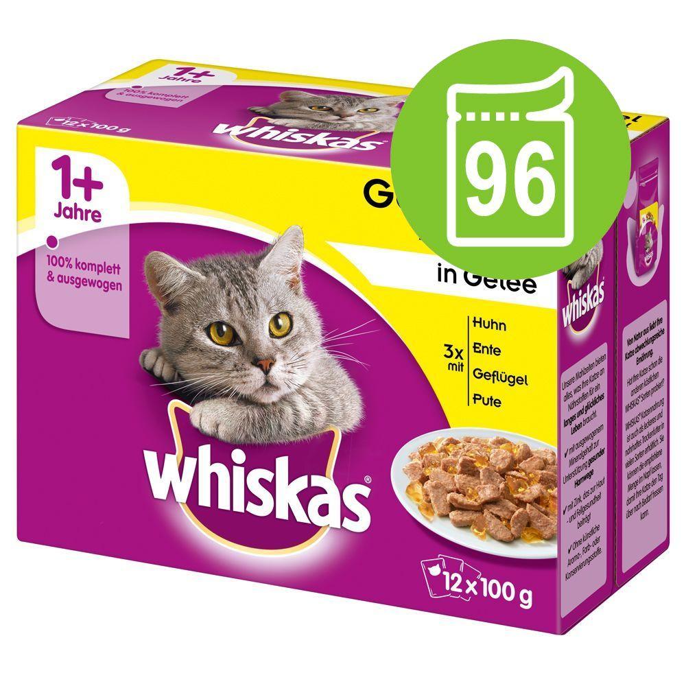 Ekonomipack: 96 x 85 / 100 g Whiskas - 1+ Ragout Klassiskt urval i gelé 85 g