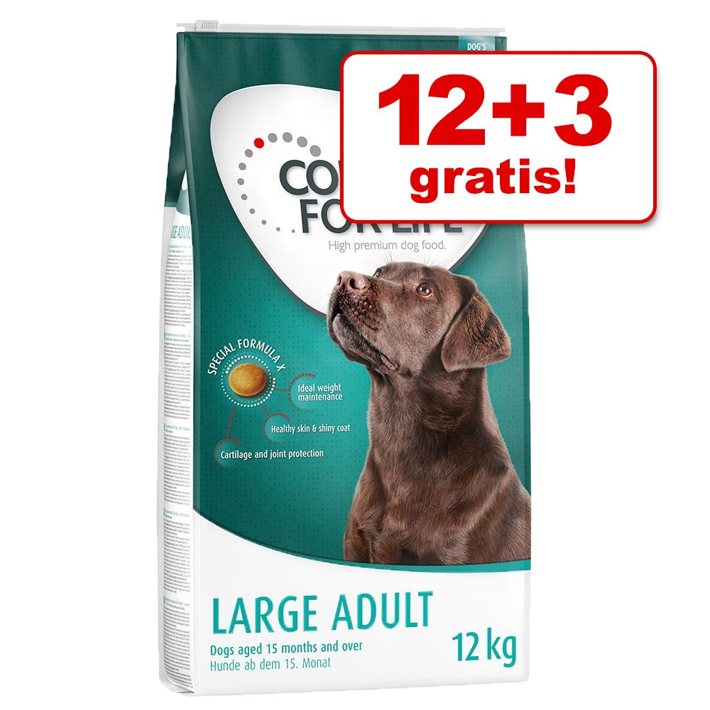 12 + 3 kg gratis! 15 kg Concept for Life Hundetrockenfutter - Medium Adult