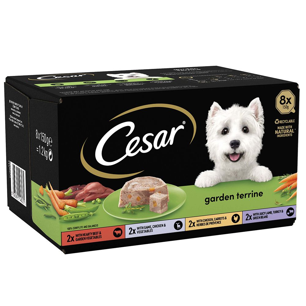 Cesar Classics Sélection en terrine pour chien - terrines du jardin (24 x 150 g)