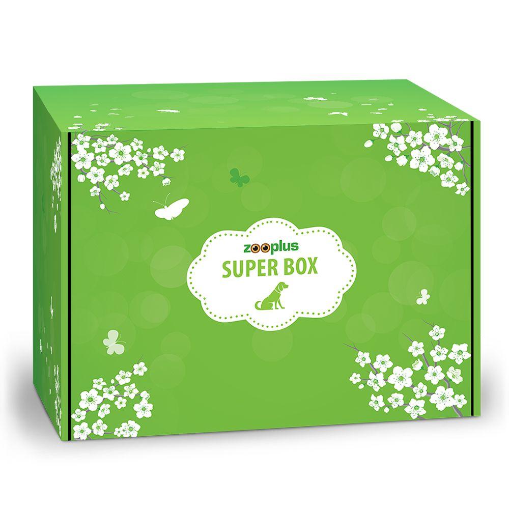 Superbox zooplus dla psa na wiosnę - Superbox dla psa na wiosnę