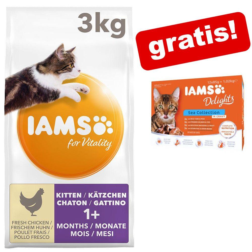 3 kg IAMS torrfoder + 12 x 85 g IAMS Delight på köpet! - Adult Indoor