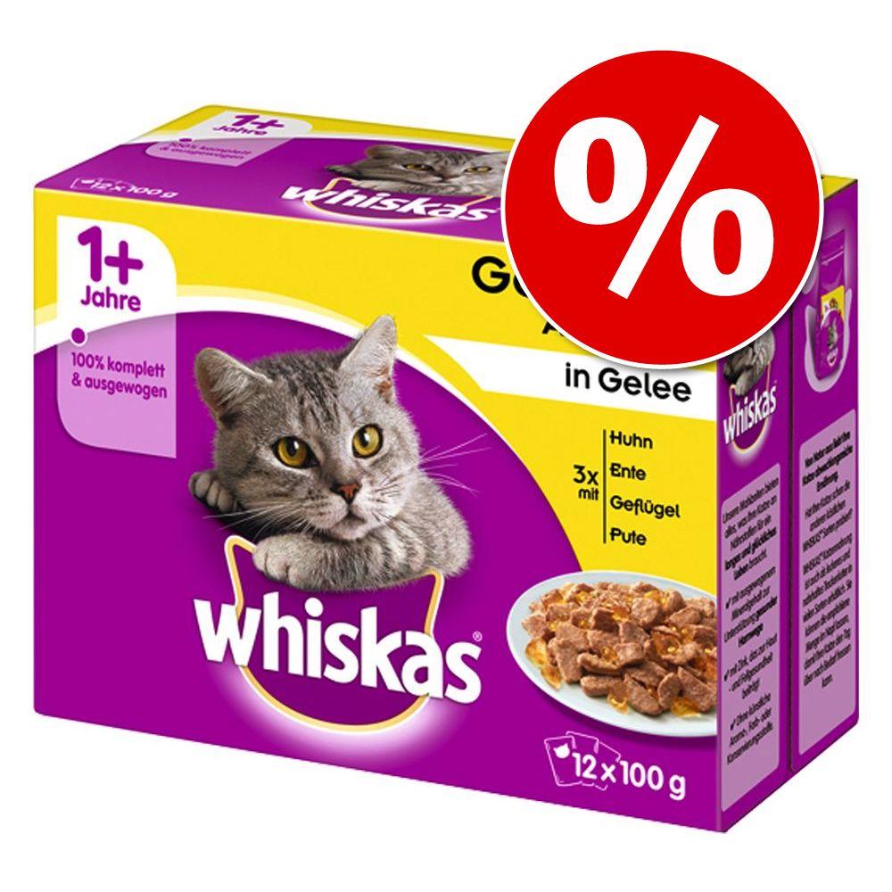RABATT på 96 x 85 / 100 g Whiskas i portionspåse - Blandpack Ragout (96 x 85 g)