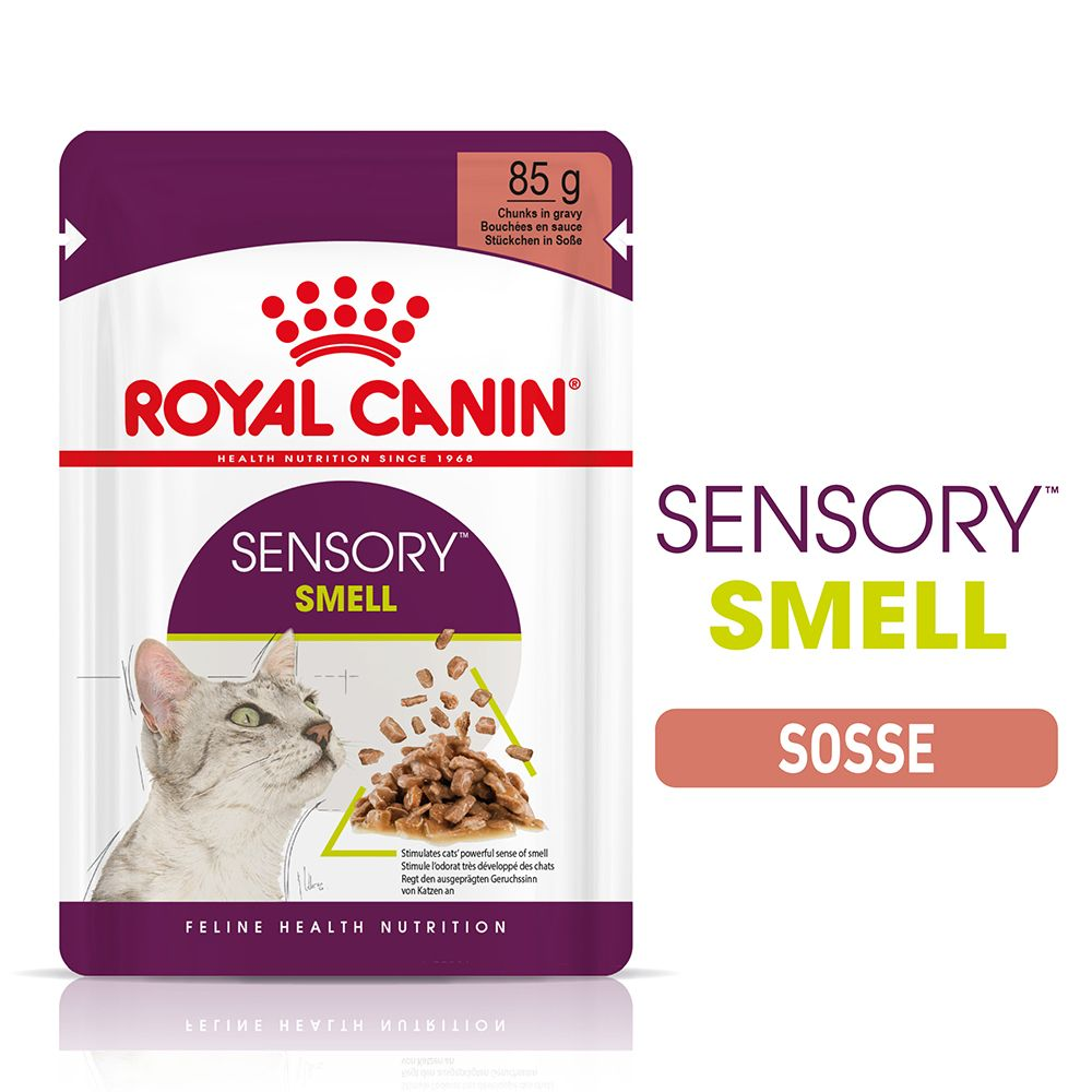 Royal Canin Sensory Smell in Sauce - 12 x 85 g