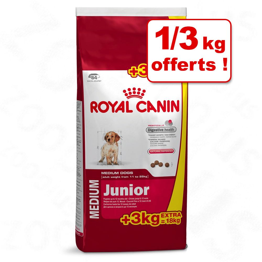 Chien Croquettes Royal Canin Size